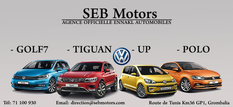 SEB Motors volkswagen