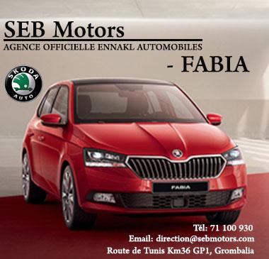 SEB Motors skoda